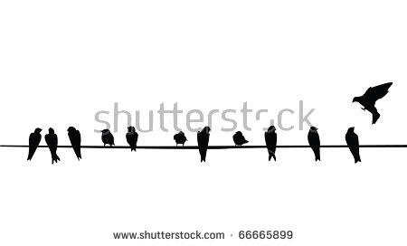 Birds On A Wire PNG - 41735