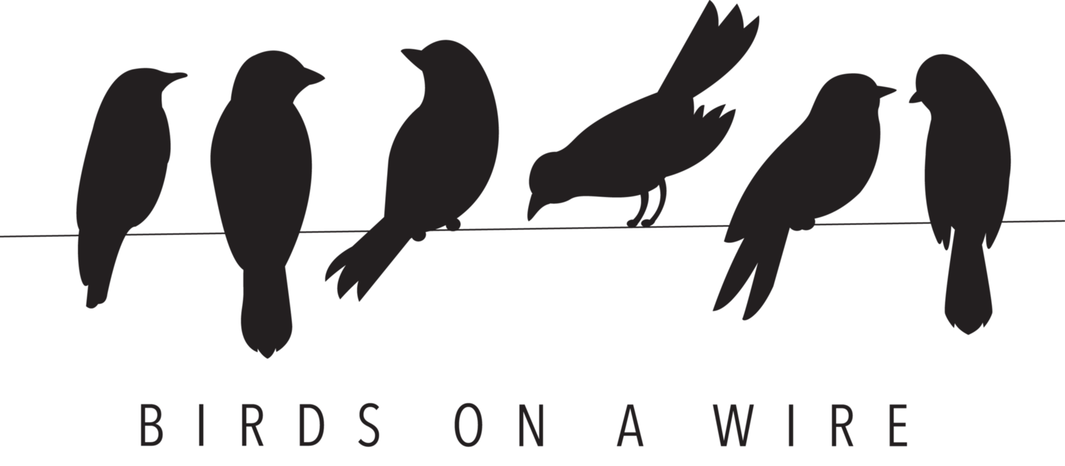 Birds On A Wire PNG - 41730