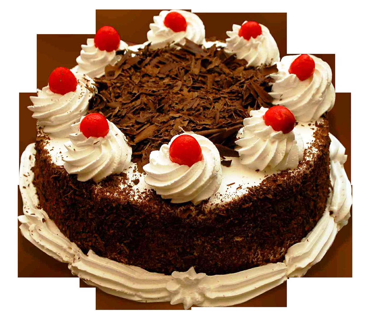 Birthday Cake PNG-PlusPNG.com-1250 - Birthday Cake PNG