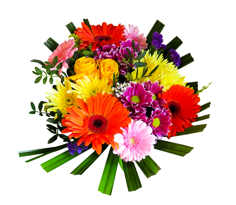 Birthday Flowers PNG HD-PlusPNG.com-827 - Birthday Flowers PNG HD