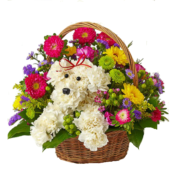 Birthday Flowers Bouquet PNG Transparent Image - Birthday Flowers PNG HD