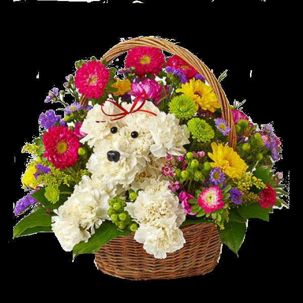 Birthday Flowers PNG HD - 142158