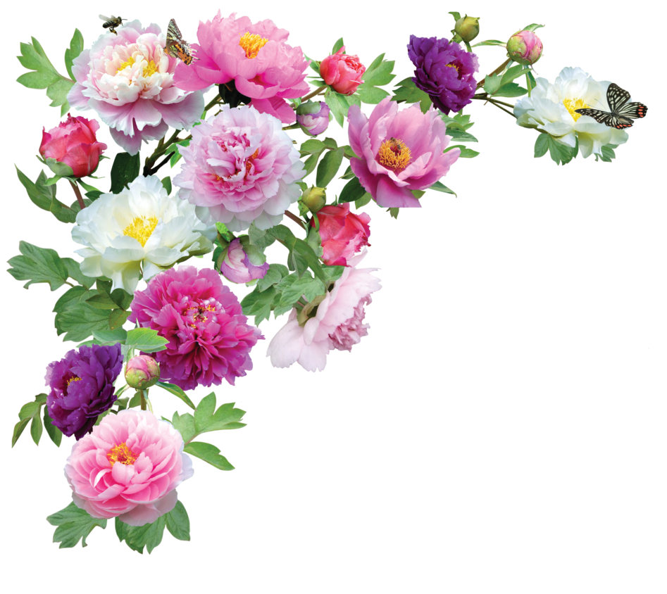 Birthday Flowers PNG HD - 142159