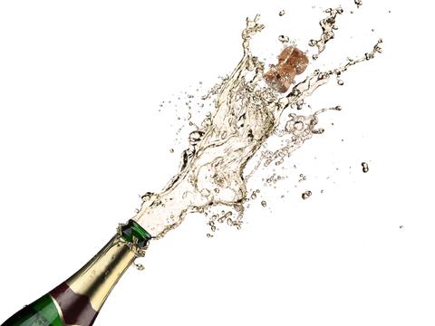 Birthday Wine PNG - 165877