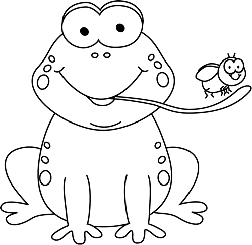 Black and White Frog Eating a Fly - Black And White Frog PNG