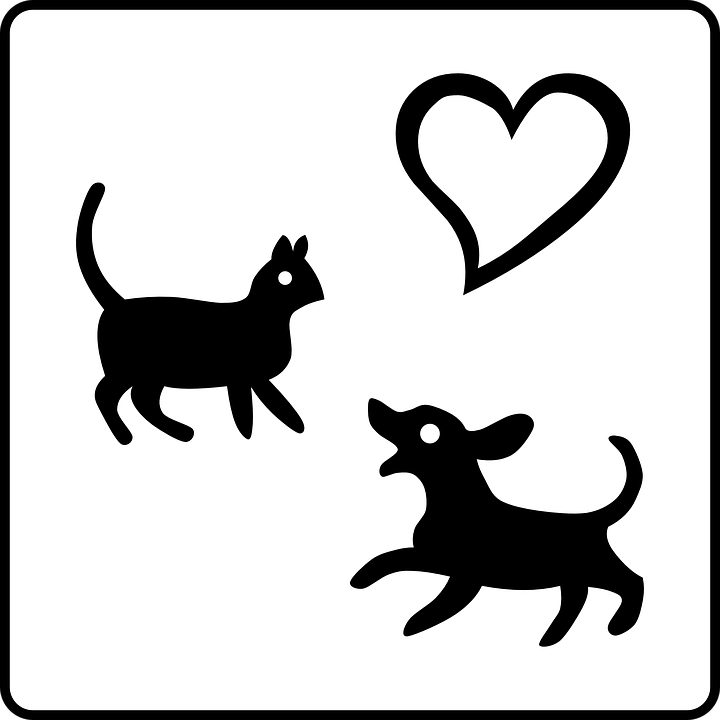 Cat, Dog, Pets - Black And White PNG Pets