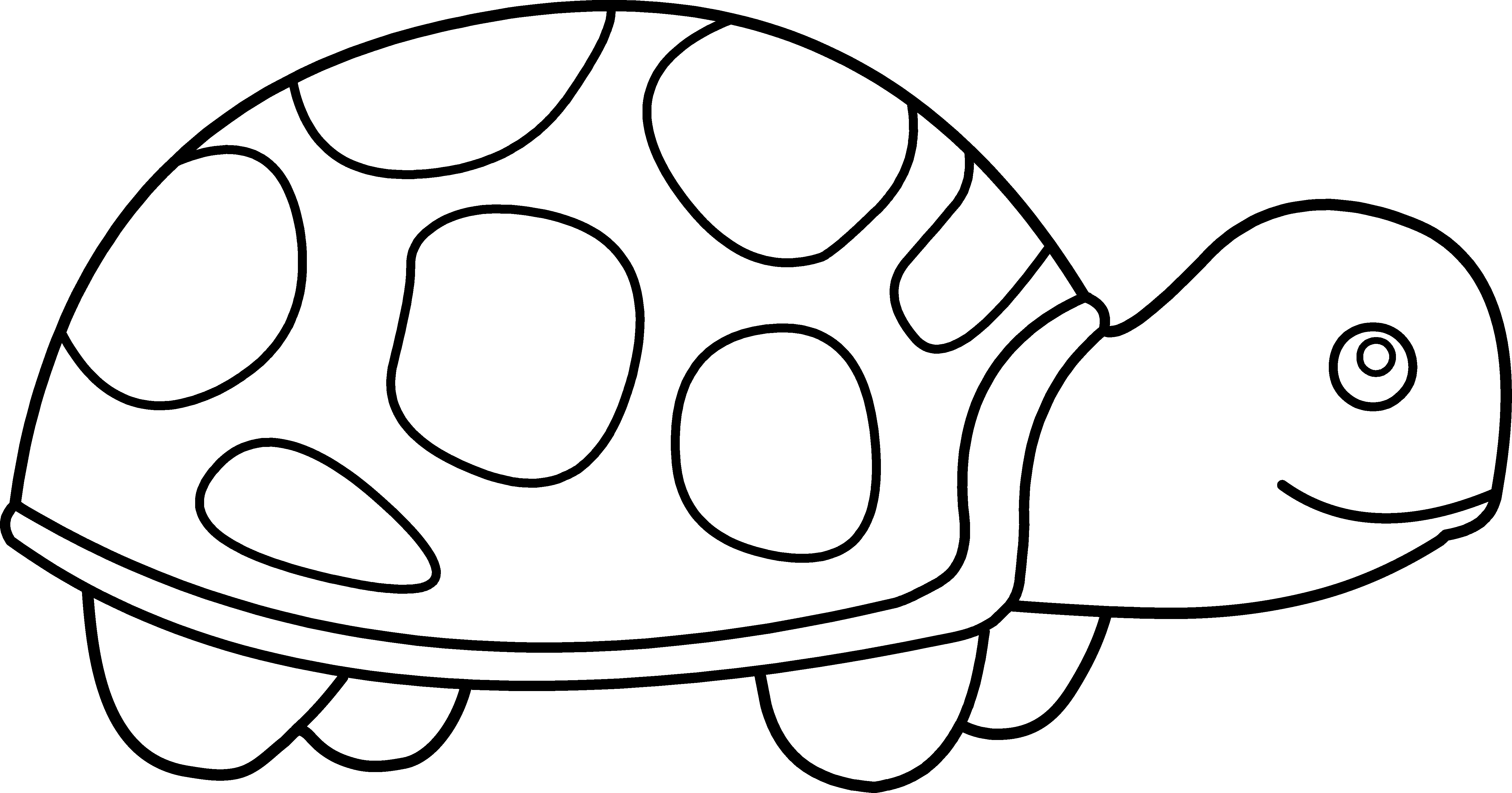 pin Tortoise clipart pet turtle #6 - Black And White PNG Pets