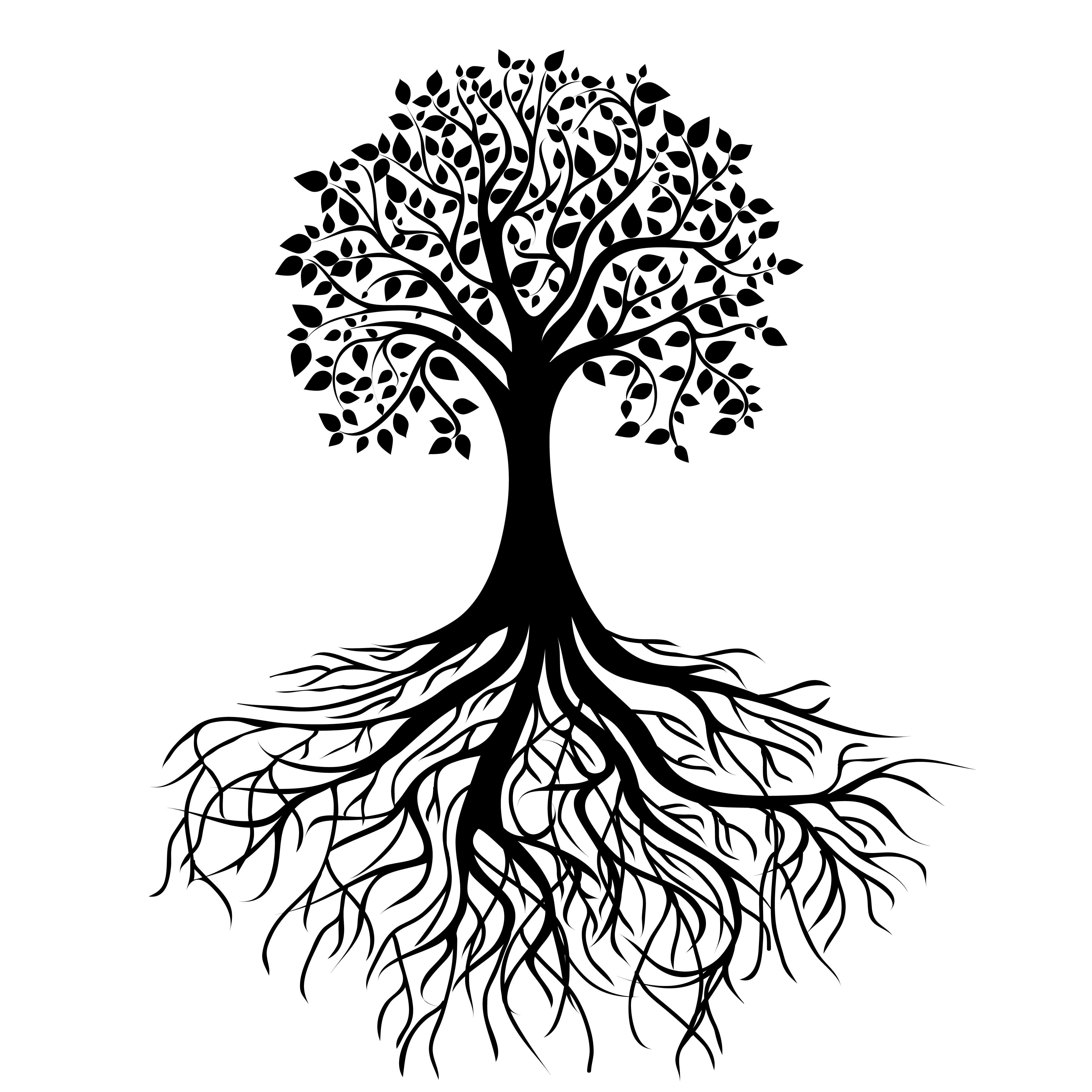 4167x4167 Tree Roots Png The writing tree Old House Pinterest Tree - Black And White Tree Of Life PNG