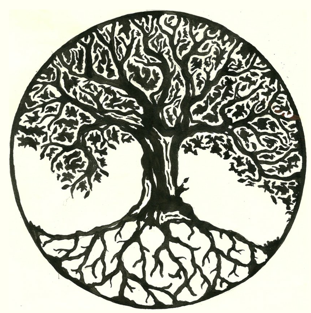 Black And White Tree Of Life PNG - 170277
