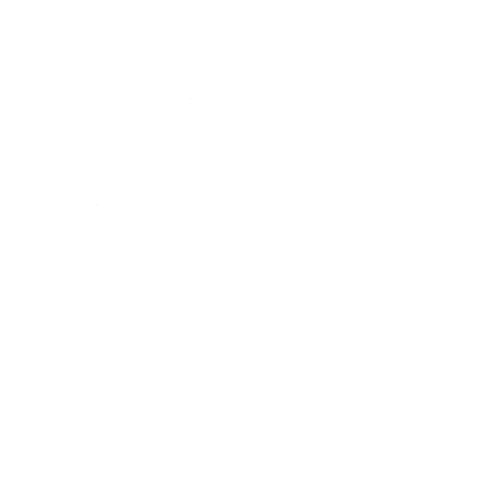 Largewhitetree - Black And White Tree Of Life PNG