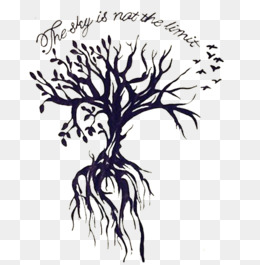 Black And White Tree Of Life PNG - 170283