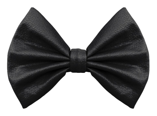 Bow Tie PNG Transparent Image