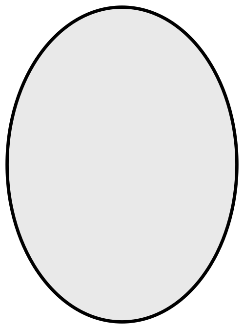 Oval PNG - 2025