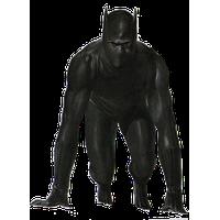 Black Panther PNG - 26503