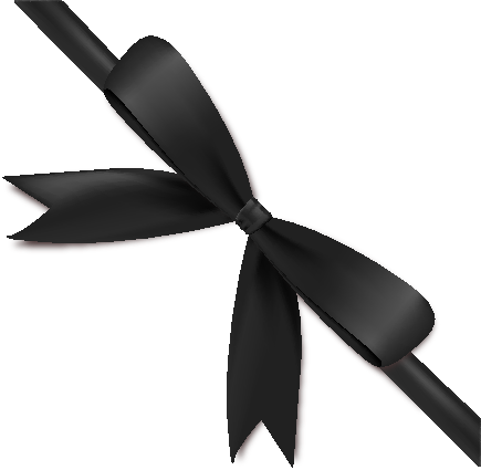 ribbon_black_icon2 - Black Ribbon Bow PNG