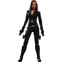 Black Widow PNG - 27828