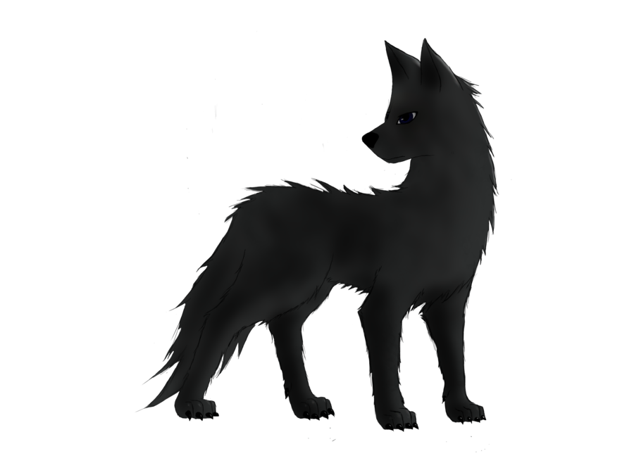 Black Wolf PNG - 163205