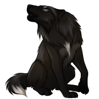 Black Wolf PNG - 163198