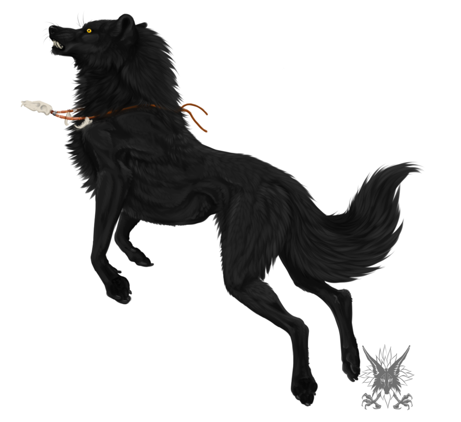 Black Wolf PNG - 163206