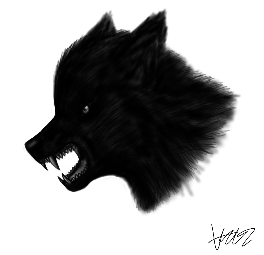 Black Wolf PNG - 163196