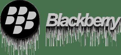 Blackberry Logo Vector PNG - 113773