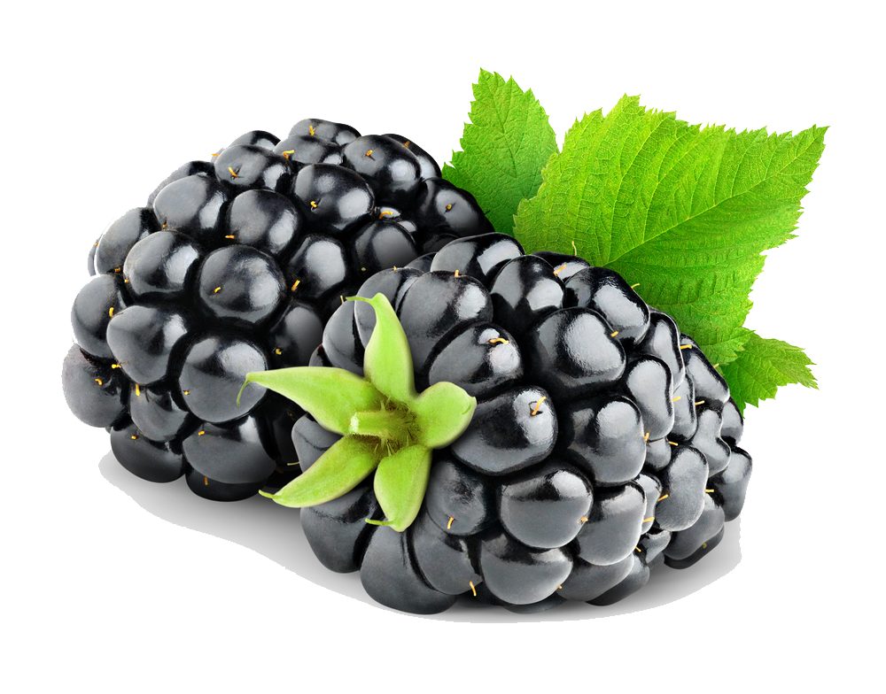 Blackberry Fruit Png Hd PNG Image - Blackberry PNG
