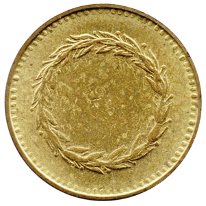 Blank Coin PNG