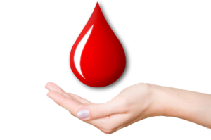 Blood Donation PNG HD - 151027