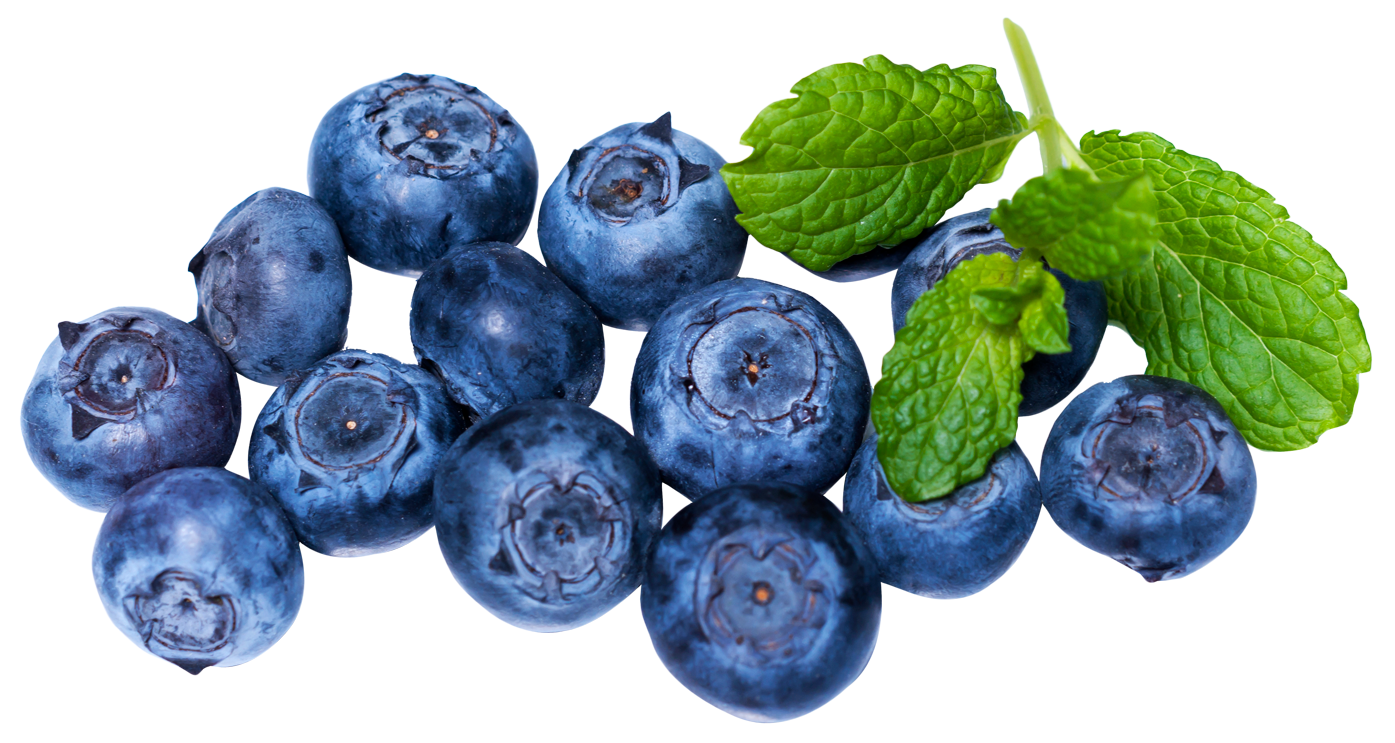 Blueberry PNG-PlusPNG.com-1395 - Blueberry PNG