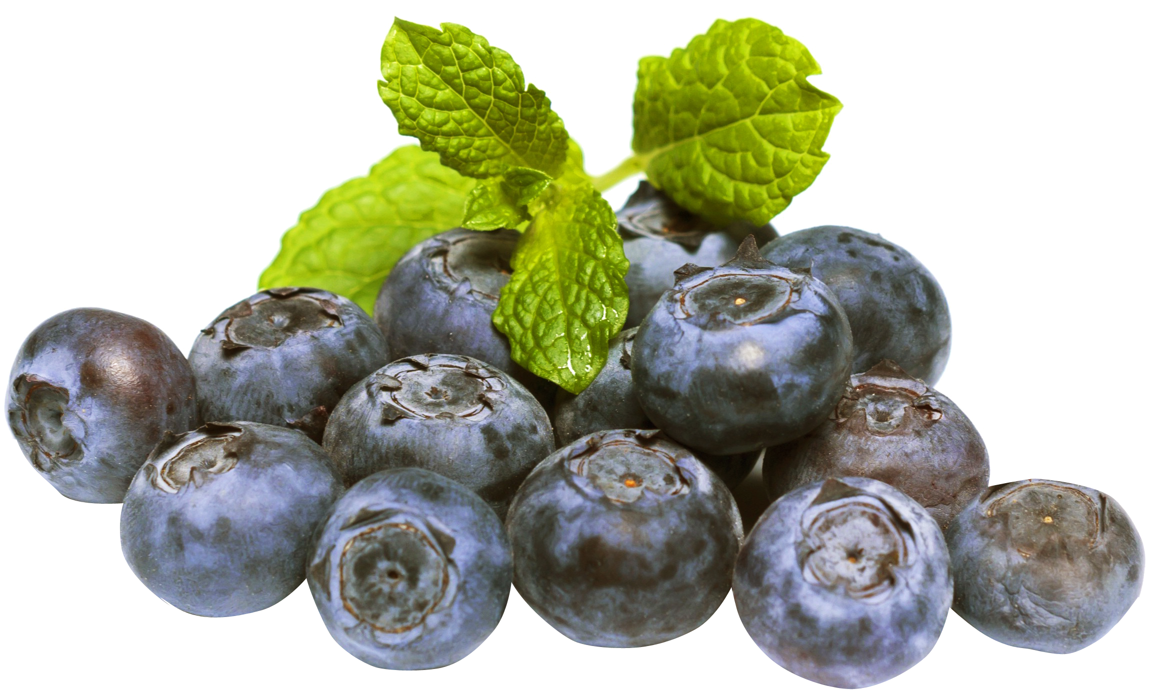 Blueberry PNG-PlusPNG.com-2304 - Blueberry PNG