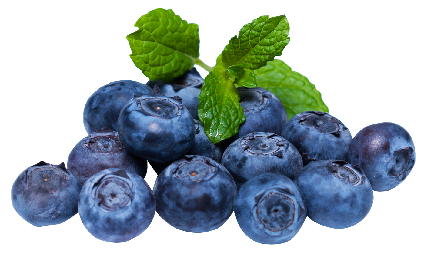 Blueberries with leaves PNG image - Blueberry PNG