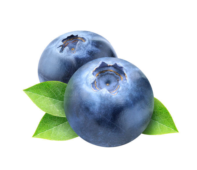 Blueberry PNG Photos - Blueberry PNG