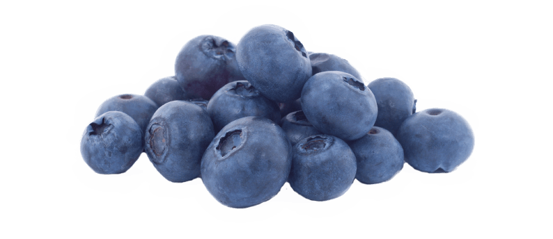 Blueberry PNG Pic - Blueberry PNG