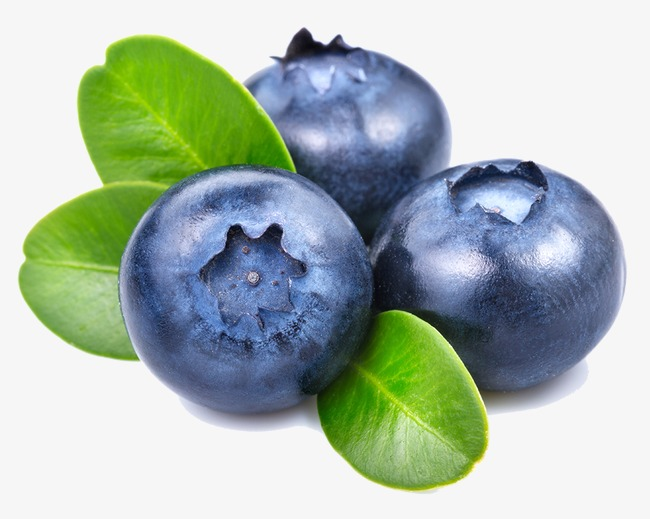 blueberry, Blueberry, Fruit, Food PNG Image - Blueberry PNG HD
