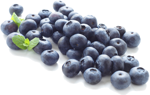 Blueberry PNG Clipart - Blueberry PNG HD