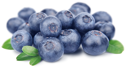 Blueberry PNG HD - Blueberry PNG HD