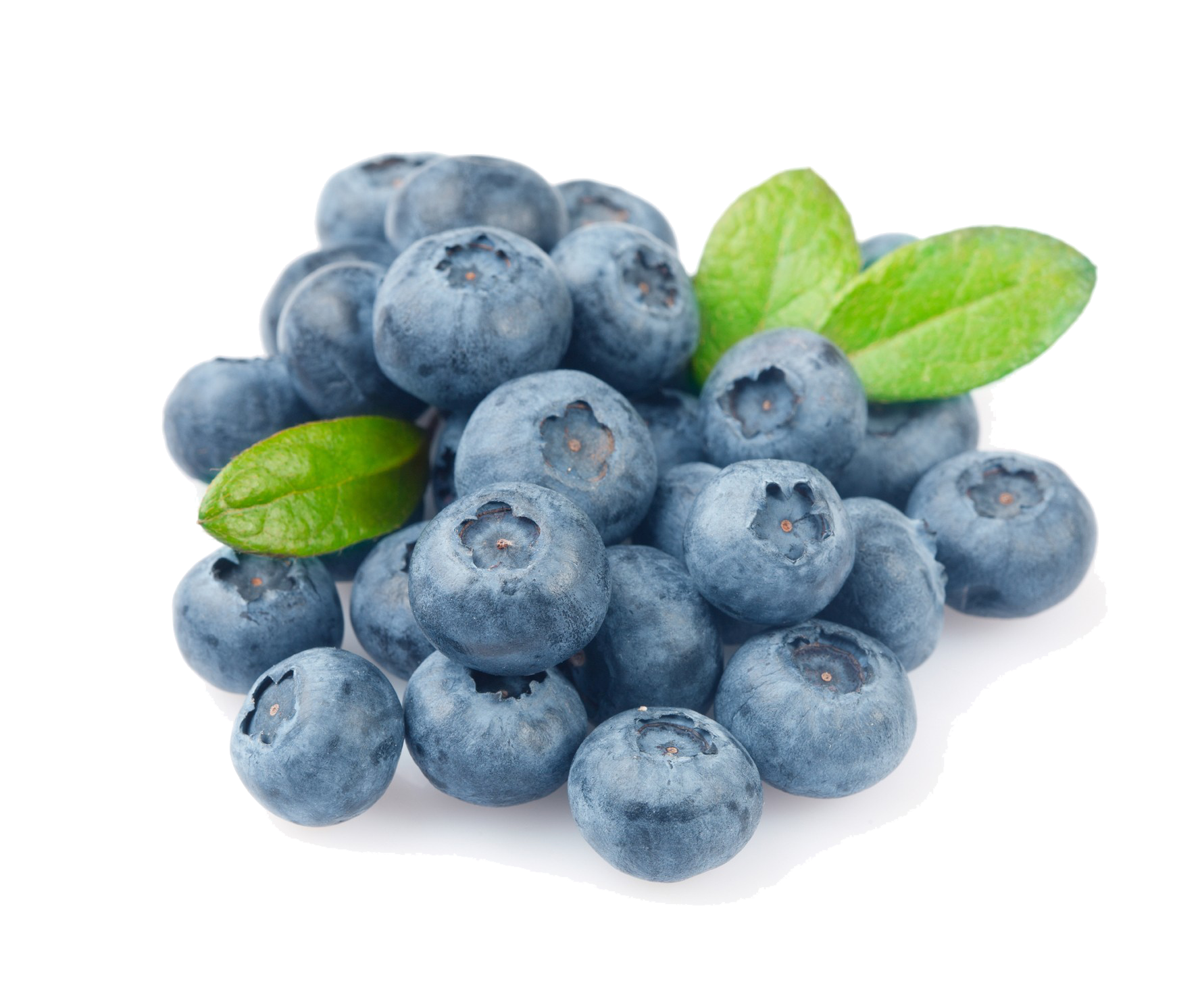 Blueberry PNG Photo - Blueberry PNG HD