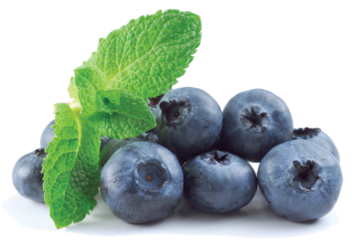 Blueberry Transparent PNG - Blueberry PNG HD