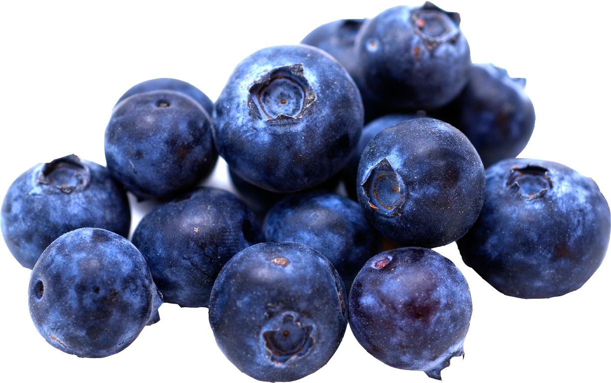 Filename: blueberries.png - Blueberry PNG - Blueberry PNG HD