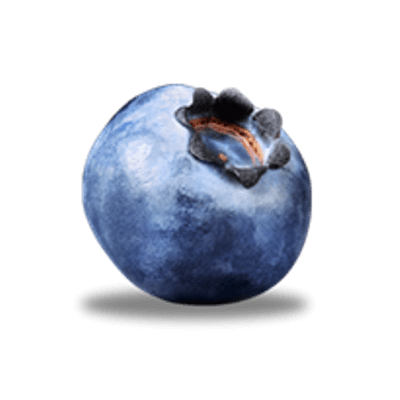 Single Blueberry - Blueberry PNG