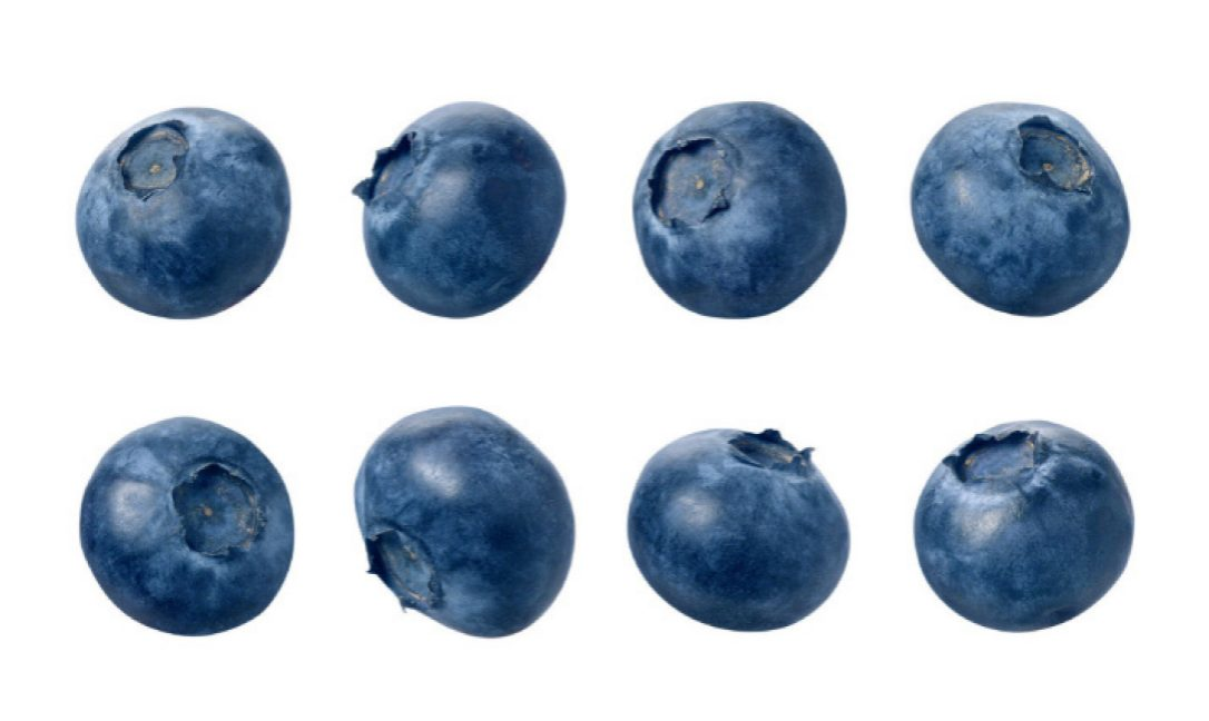 What Canadian doesnu0027t love blueberries (the wild, flavourful ones, PlusPng.com  - Blueberry PNG