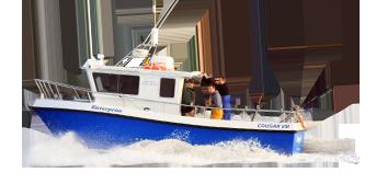 ECCougarCat - Boat Trip PNG