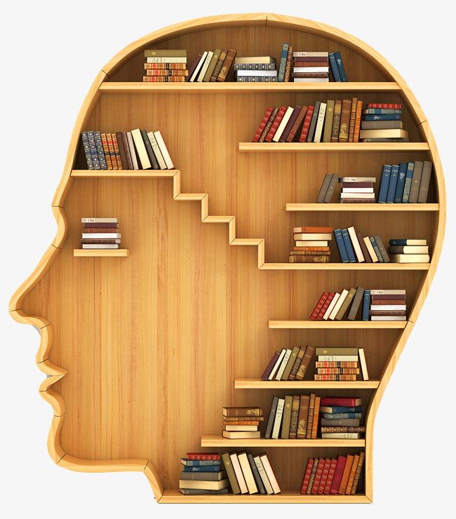 Days creative personu0027s head Bookshelf, Creative Fashion, Bookshelf Image,  Bookcase Free PNG Image