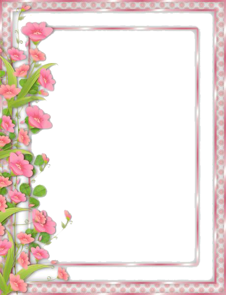 Flowers - Borders PNG HD