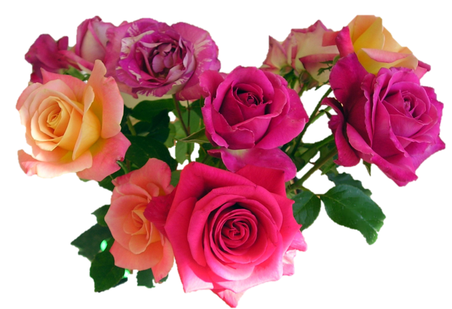 Bouquet Of Roses PNG HD - 142834