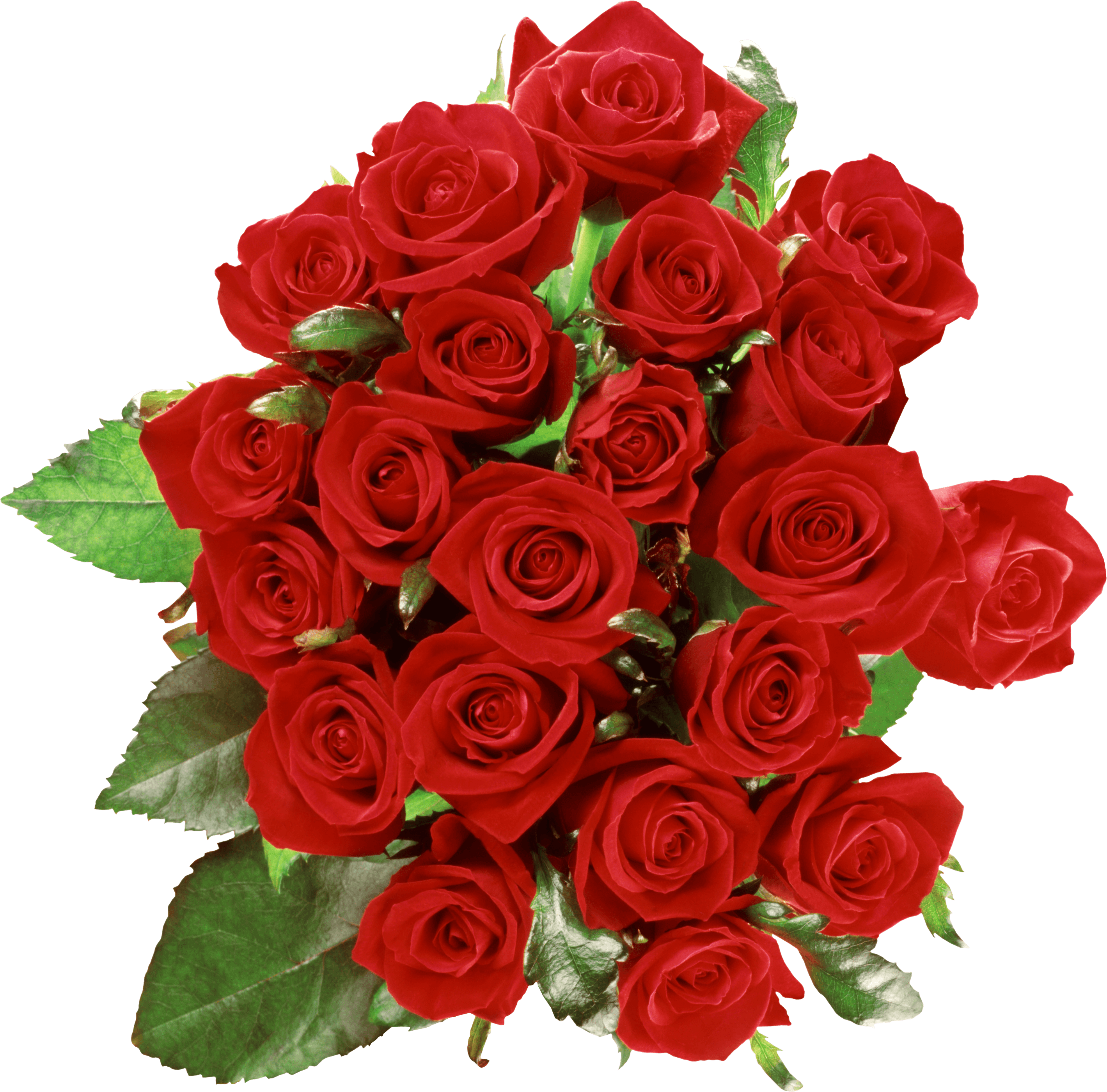 Bouquet Of Roses PNG HD - 142831