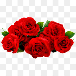 Bouquet Of Roses PNG HD - 142841