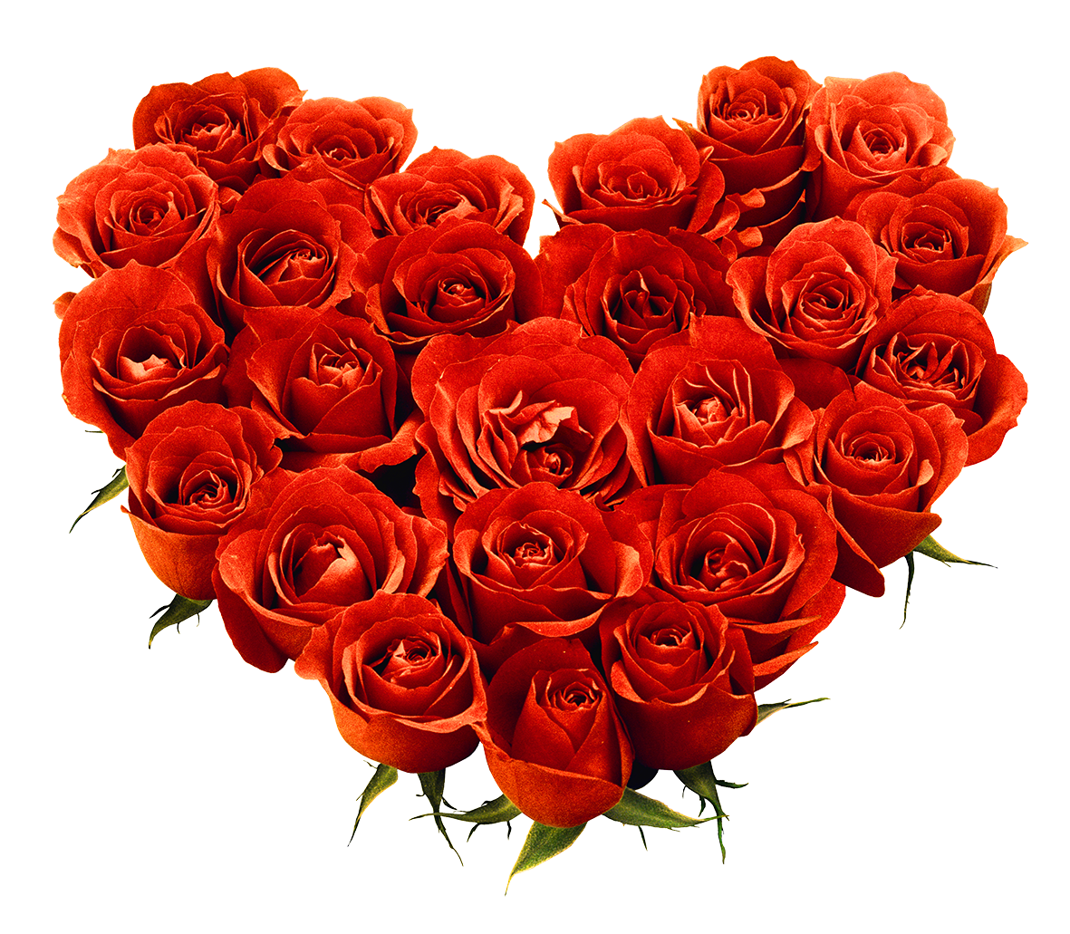 Bouquet Of Roses PNG HD - 142847