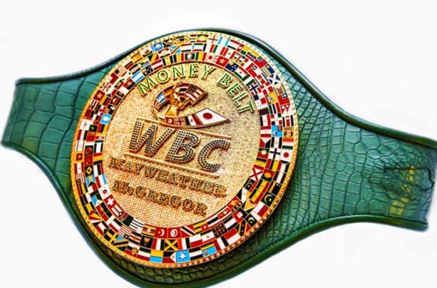 Boxing Belt PNG - 153051