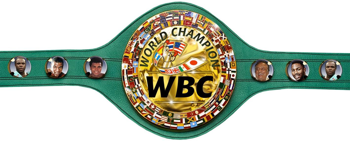 Boxing Belt PNG - 153055